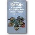 Drewitz 1969 – Oktoberlicht oder ein Tag