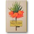 Sackville-West 1997 – Blumen in meinem Garten