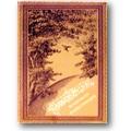 Sylva 1881 – Rumänische Dichtungen