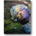 Schjeldahl, Phillips 1987 – Cindy Sherman