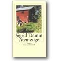 Damm 1999 – Atemzüge