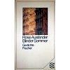 Ausländer 1987 – Blinder Sommer