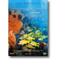 Riefenstahl 2003 – Impressionen unter Wasser
