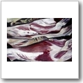 Gabriele von Glasow: Fleisch I