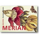 Postkartenbuch Maria Sibylla Merian 2012